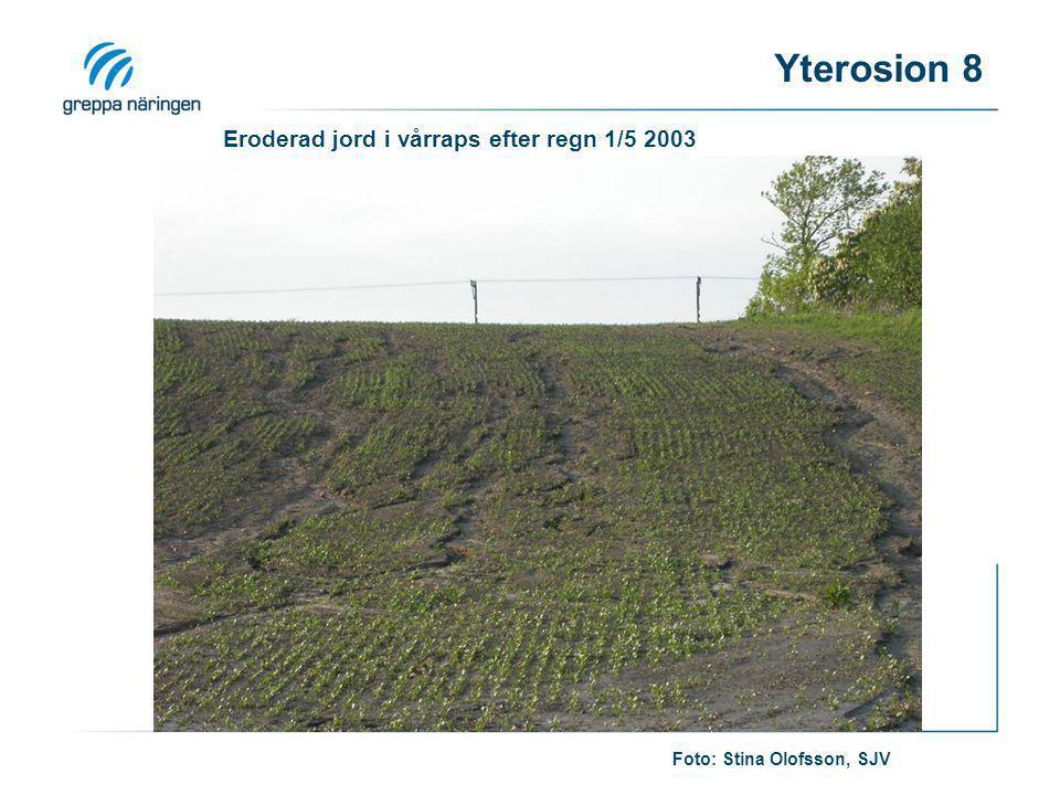 Eroderad jord i vårraps efter regn 1/5 2003 Foto: Stina Olofsson, SJV Yterosion 8