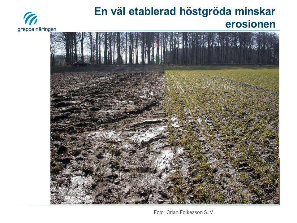 Utför harvningen på våren eller vårplöj om möjligt! Höstharvat fält har gett erosion