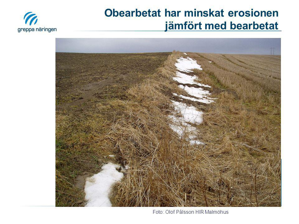 Rännilar har bildats p.g.a. att ytvattenbrunnen längre upp inte klarat av allt regnvatten