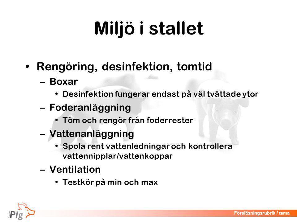 Föreläsningsrubrik / tema Övervakning av grisning Spädgrisarna Foto: K. Andersson