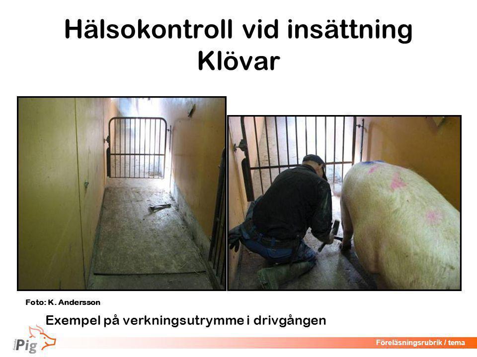 Föreläsningsrubrik / tema Hälsokontroll Juver Foto: M. LöfstedtFoto: K. Andersson
