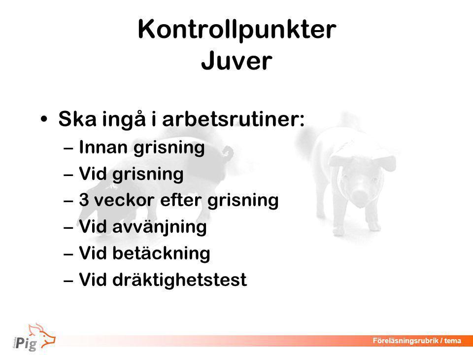 Föreläsningsrubrik / tema Digivningsmönster hos gris Källa: M. Löfstedt, SvDHV
