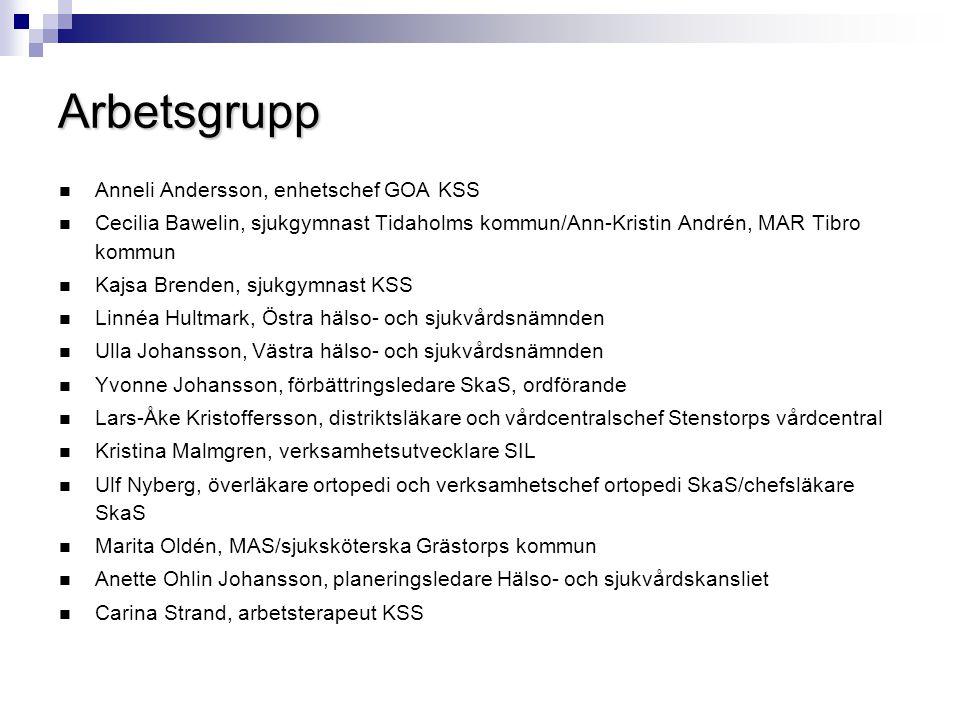 Arbetsgrupp  Anneli Andersson, enhetschef GOA KSS  Cecilia Bawelin, sjukgymnast Tidaholms kommun/Ann-Kristin Andrén, MAR Tibro kommun  Kajsa Brende