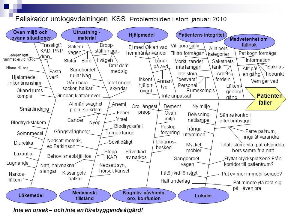 .Alla pers- kategorier Fallskador urologavdelningen KSS. Problembilden i stort, januari 2010 Patienten faller Kognitiv påv/neds, oro, konfusion Ovan m