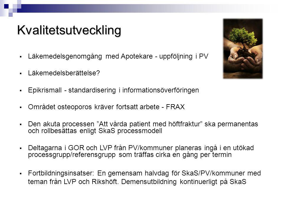 Slutord  Arbetet med det lokala vårdprogrammet visar att vården av patienter med höftfrakturer i Skaraborg idag i stor utsträckning sker enligt Socialstyrelsens och aktuell forsknings rekommendationer.