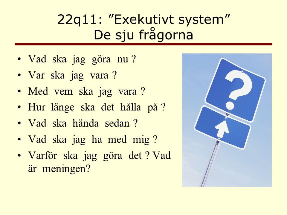 """22q11: """"Exekutivt system"""" De sju frågorna •Vad ska jag göra nu ? •Var ska jag vara ? •Med vem ska jag vara ? •Hur länge ska det hålla på ? •Vad ska hä"""