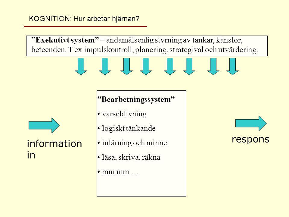 information in respons Bearbetningssystem • varseblivning • logiskt tänkande • inlärning och minne • läsa, skriva, räkna •mm mm… Exekutivt system = ändamålsenlig styrning av tankar, känslor och beteenden.