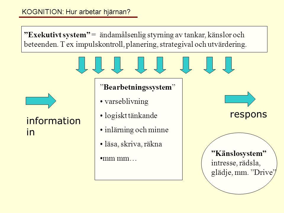 """information in respons """"Bearbetningssystem"""" • varseblivning • logiskt tänkande • inlärning och minne • läsa, skriva, räkna •mm mm… """"Exekutivt system"""""""