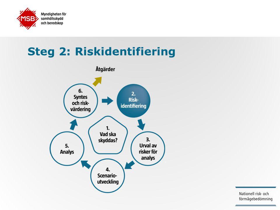 Steg 2: Riskidentifiering