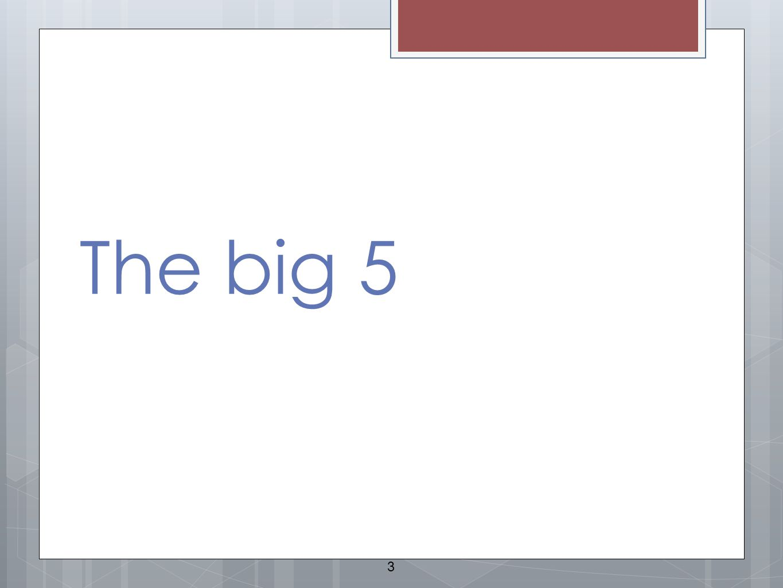 The big 5 3
