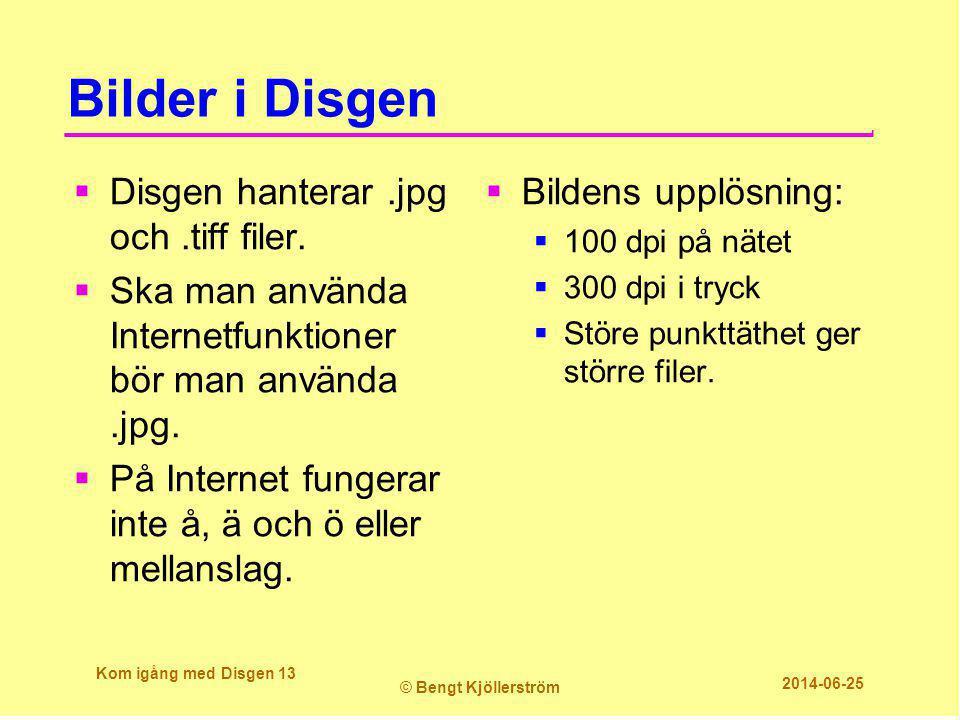Bilder i Disgen  Disgen hanterar.jpg och.tiff filer.  Ska man använda Internetfunktioner bör man använda.jpg.  På Internet fungerar inte å, ä och ö