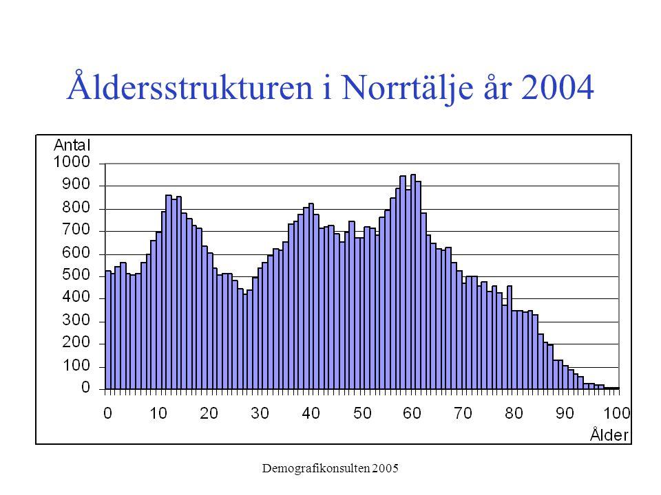 Demografikonsulten 2005 Åldersstrukturen i Norrtälje år 2004