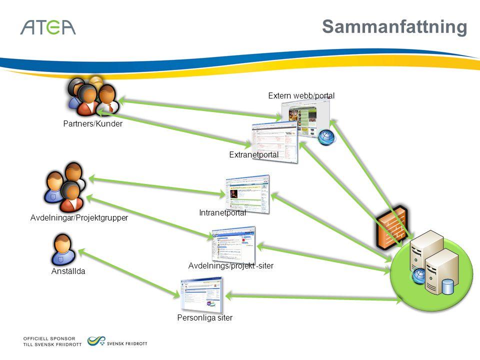 Sammanfattning Anställda Partners/Kunder Avdelningar/Projektgrupper Personliga siter Avdelnings/projekt -siter Intranetportal Extranetportal Extern we
