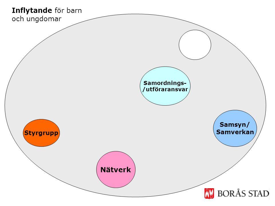 Nätverk Samsyn/ Samverkan Samordnings- /utföraransvar Styrgrupp Inflytande för barn och ungdomar