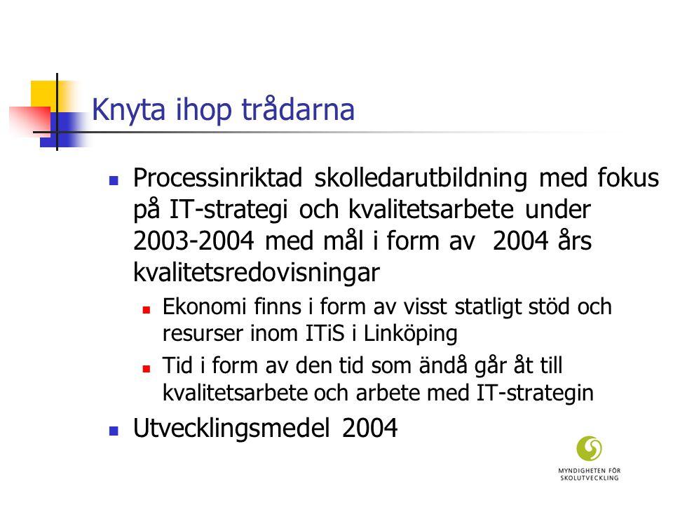 Knyta ihop trådarna  Processinriktad skolledarutbildning med fokus på IT-strategi och kvalitetsarbete under 2003-2004 med mål i form av 2004 års kvalitetsredovisningar  Ekonomi finns i form av visst statligt stöd och resurser inom ITiS i Linköping  Tid i form av den tid som ändå går åt till kvalitetsarbete och arbete med IT-strategin  Utvecklingsmedel 2004