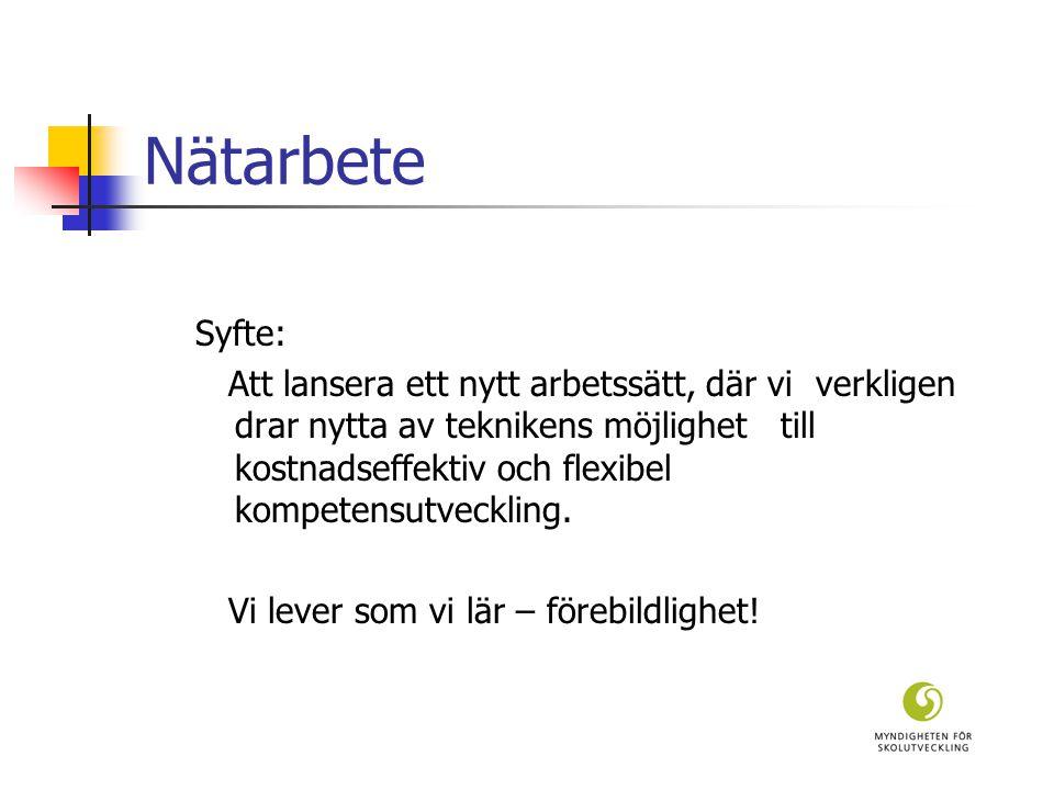 Tema: NÄTKULTURER  vt-04 nytt tema presenteras  Resurser:  Texter, Video, Diskussionsunderlag, Fråga en forskare alt.