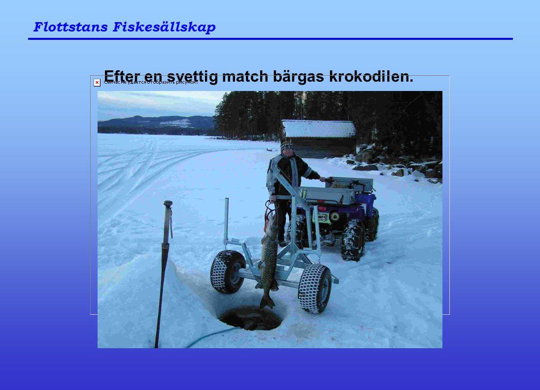 Flottstans Fiskesällskap Efter en svettig match bärgas krokodilen.