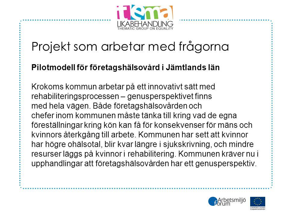 Projekt som arbetar med frågorna Pilotmodell för företagshälsovård i Jämtlands län Krokoms kommun arbetar på ett innovativt sätt med rehabiliteringsprocessen – genusperspektivet finns med hela vägen.