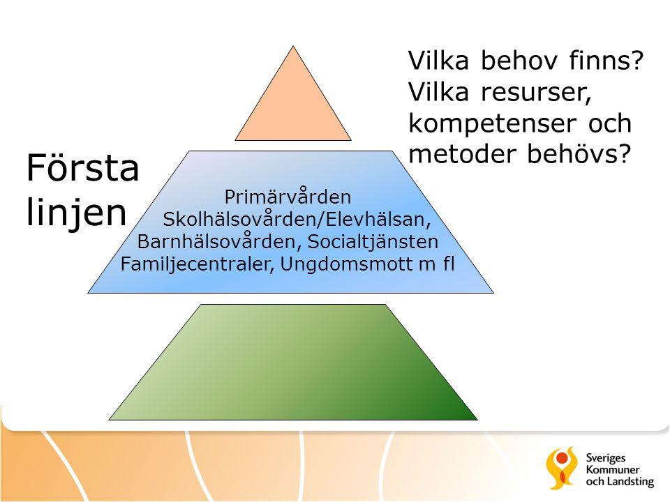 Första linjen Vilka behov finns.Vilka resurser, kompetenser och metoder behövs.