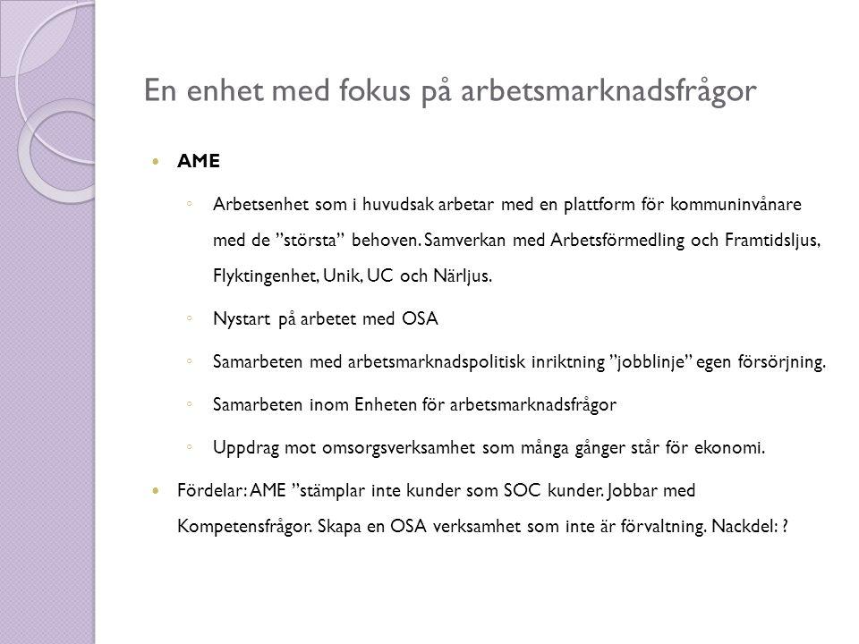 En enhet med fokus på arbetsmarknadsfrågor  AME ◦ Arbetsenhet som i huvudsak arbetar med en plattform för kommuninvånare med de största behoven.