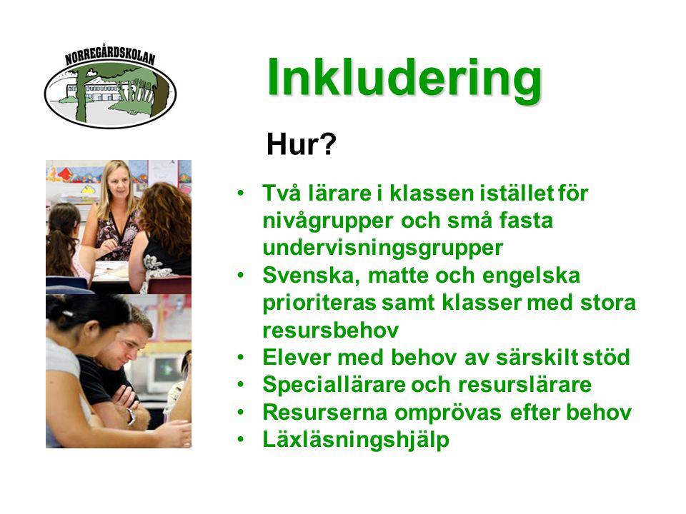 •Två lärare i klassen istället för nivågrupper och små fasta undervisningsgrupper •Svenska, matte och engelska prioriteras samt klasser med stora resu