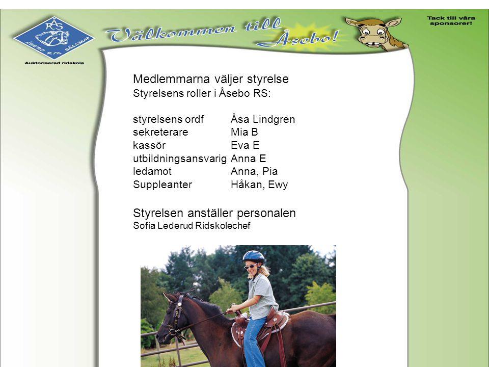 Medlemmarna väljer styrelse Styrelsens roller i Åsebo RS: styrelsens ordfÅsa Lindgren sekreterareMia B kassörEva E utbildningsansvarigAnna E ledamotAn