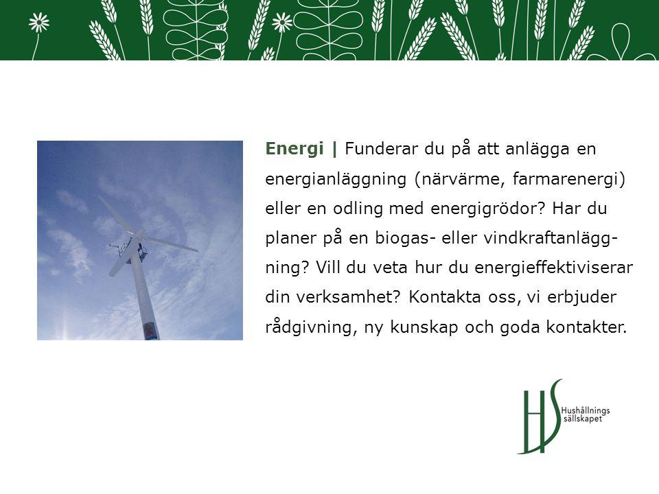 Energi | Funderar du på att anlägga en energianläggning (närvärme, farmarenergi) eller en odling med energigrödor.