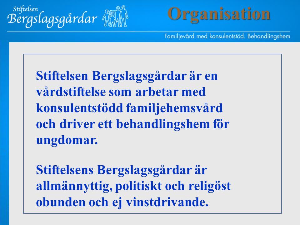 Stiftelsen Bergslagsgårdar är en vårdstiftelse som arbetar med konsulentstödd familjehemsvård och driver ett behandlingshem för ungdomar. Stiftelsens
