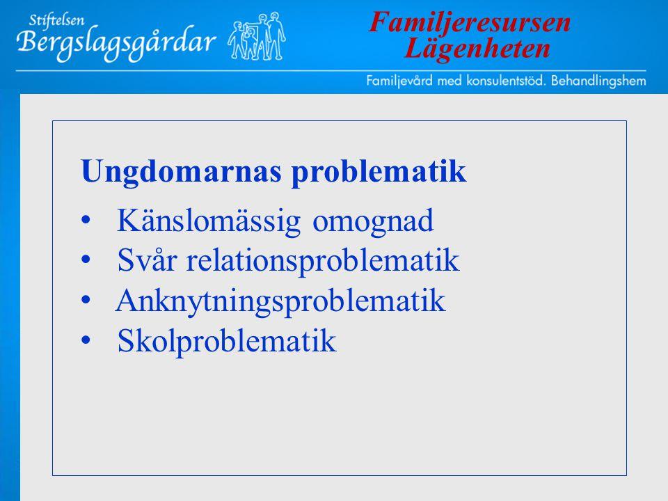 Ungdomarnas problematik • Känslomässig omognad • Svår relationsproblematik • Anknytningsproblematik • Skolproblematik Familjeresursen Lägenheten