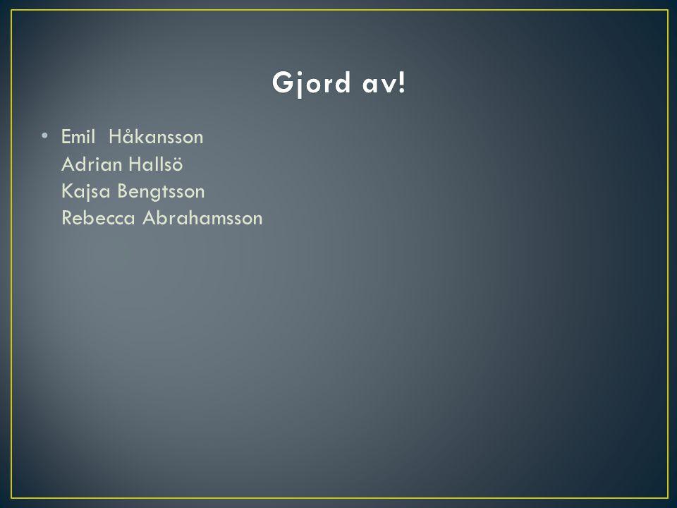 • Emil Håkansson Adrian Hallsö Kajsa Bengtsson Rebecca Abrahamsson