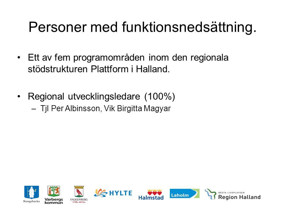 Personer med funktionsnedsättning. •Ett av fem programområden inom den regionala stödstrukturen Plattform i Halland. •Regional utvecklingsledare (100%