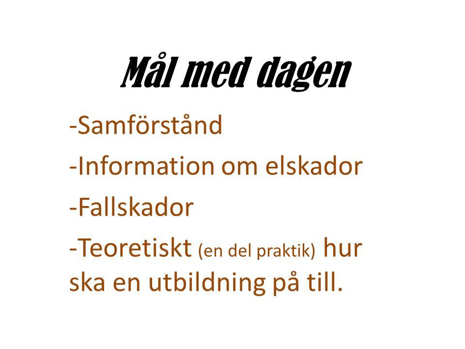 Mål med dagen -Samförstånd -Information om elskador -Fallskador -Teoretiskt (en del praktik) hur ska en utbildning på till.