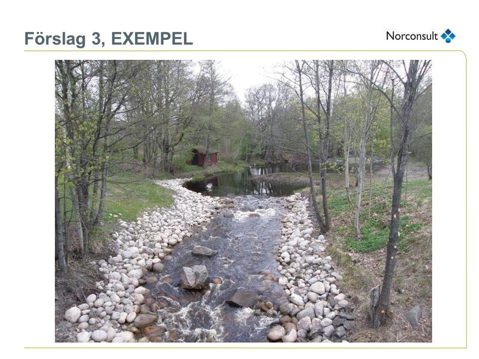 Förslag 3, EXEMPEL