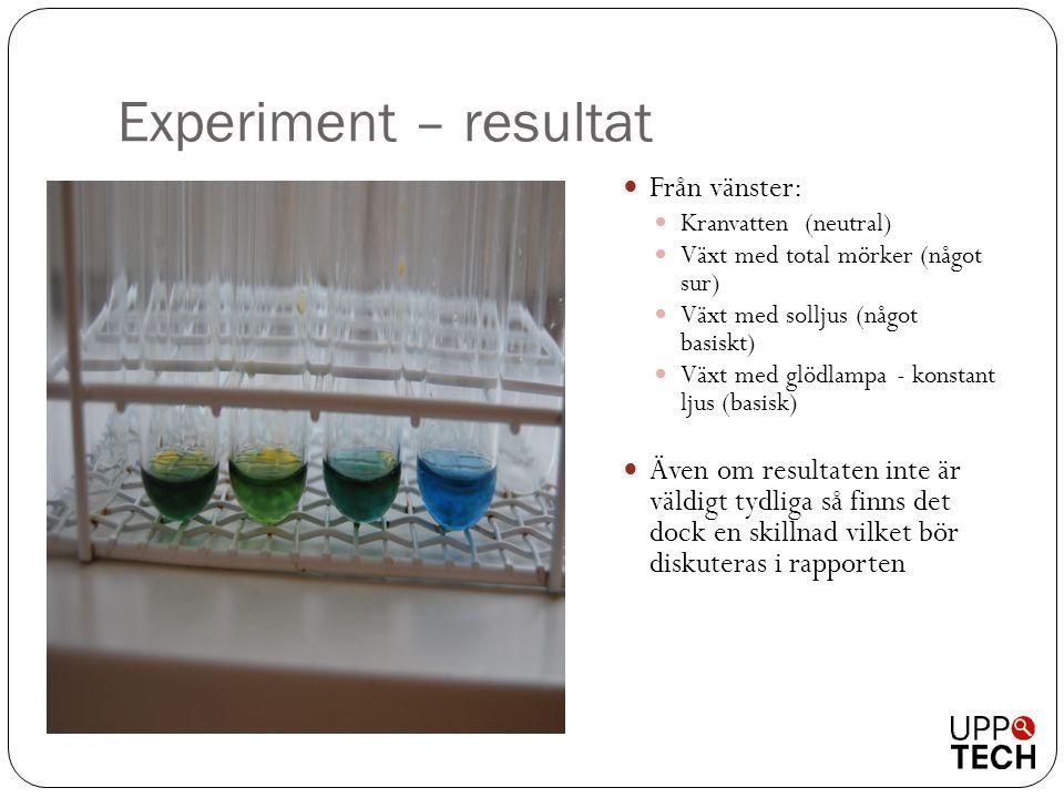 Experiment – resultat  Från vänster:  Kranvatten (neutral)  Växt med total mörker (något sur)  Växt med solljus (något basiskt)  Växt med glödlam