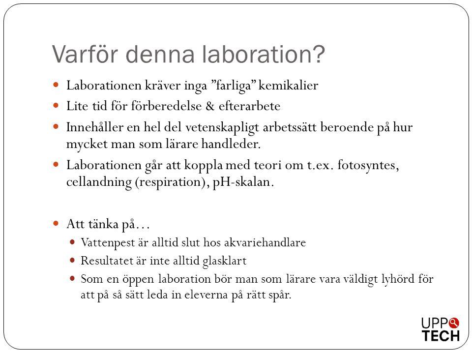 """Varför denna laboration?  Laborationen kräver inga """"farliga"""" kemikalier  Lite tid för förberedelse & efterarbete  Innehåller en hel del vetenskapli"""