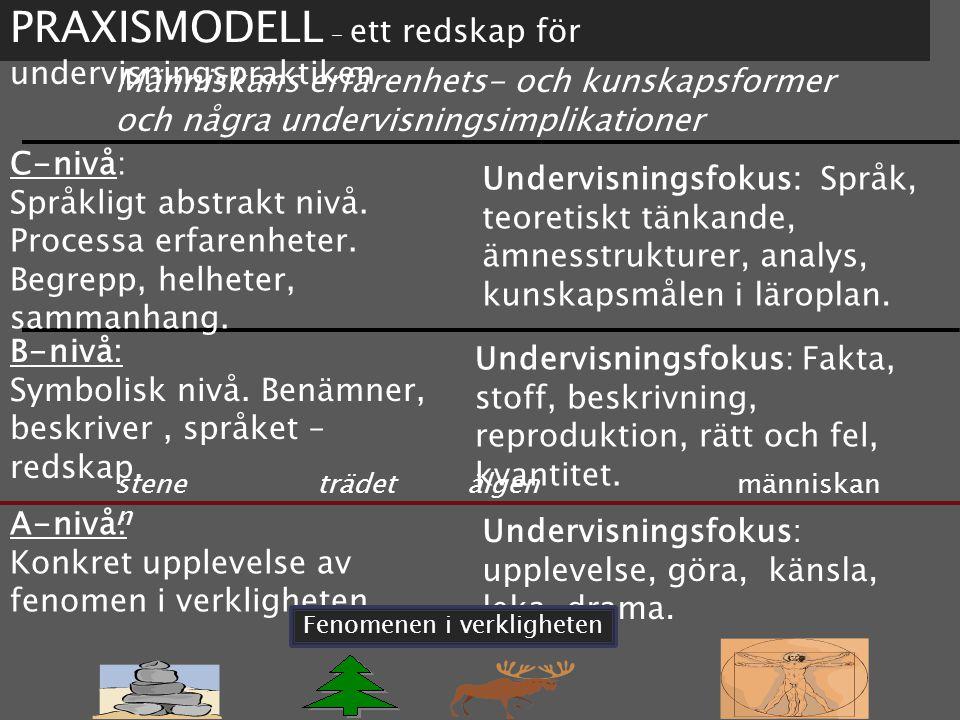 PRAXISMODELL – ett redskap för undervisningspraktiken Människans erfarenhets- och kunskapsformer och några undervisningsimplikationer C-nivå: Språkligt abstrakt nivå.