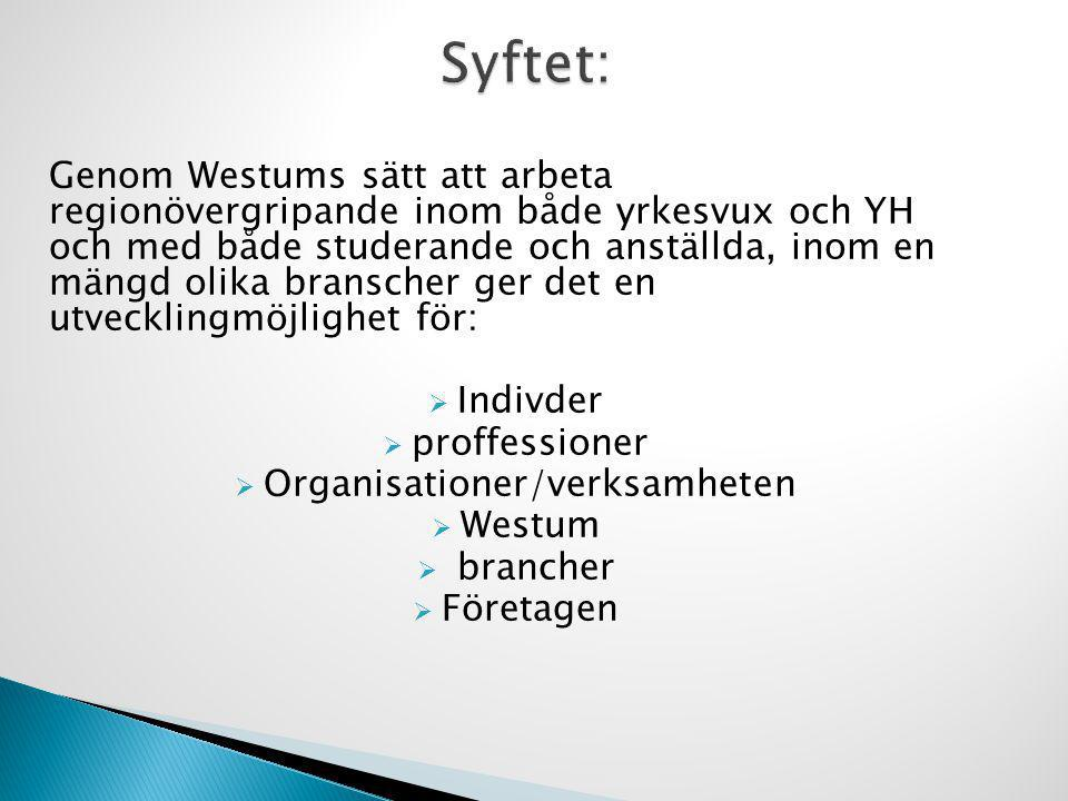 Genom Westums sätt att arbeta regionövergripande inom både yrkesvux och YH och med både studerande och anställda, inom en mängd olika branscher ger de