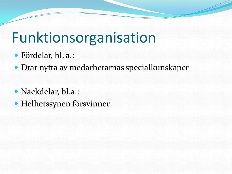 Funktionsorganisation  Fördelar, bl. a.:  Drar nytta av medarbetarnas specialkunskaper  Nackdelar, bl.a.:  Helhetssynen försvinner