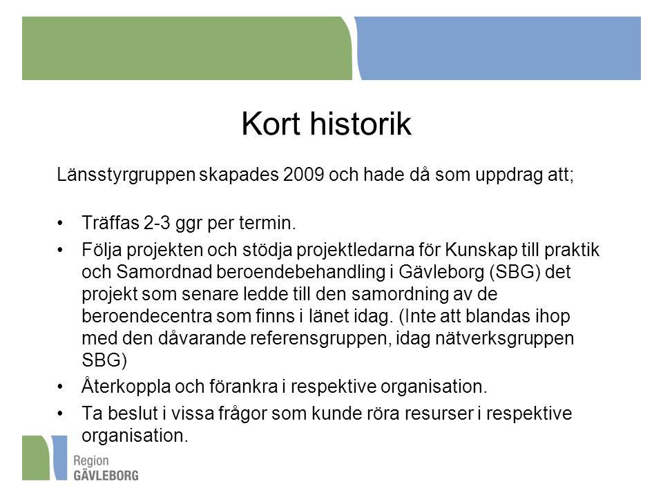 Kort historik Länsstyrgruppen skapades 2009 och hade då som uppdrag att; •Träffas 2-3 ggr per termin. •Följa projekten och stödja projektledarna för K