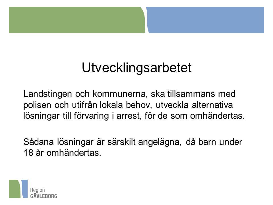Utvecklingsarbetet Landstingen och kommunerna, ska tillsammans med polisen och utifrån lokala behov, utveckla alternativa lösningar till förvaring i a
