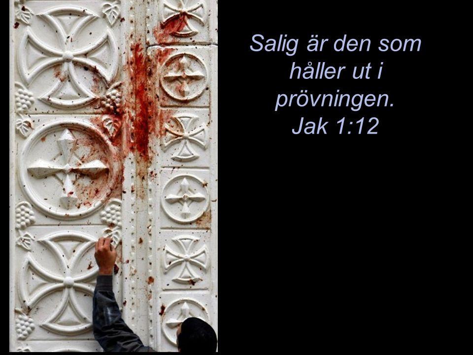 Salig är den som håller ut i prövningen. Jak 1:12