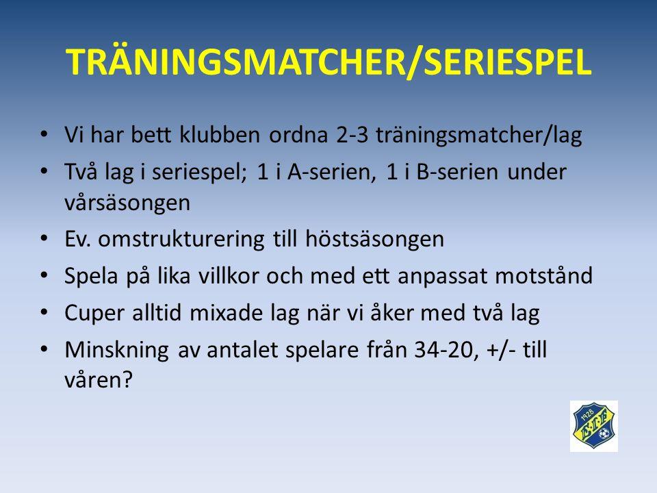 TRÄNINGSMATCHER/SERIESPEL • Vi har bett klubben ordna 2-3 träningsmatcher/lag • Två lag i seriespel; 1 i A-serien, 1 i B-serien under vårsäsongen • Ev.