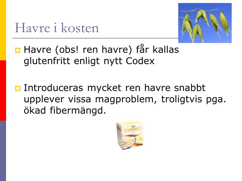 Havre i kosten  Havre (obs.