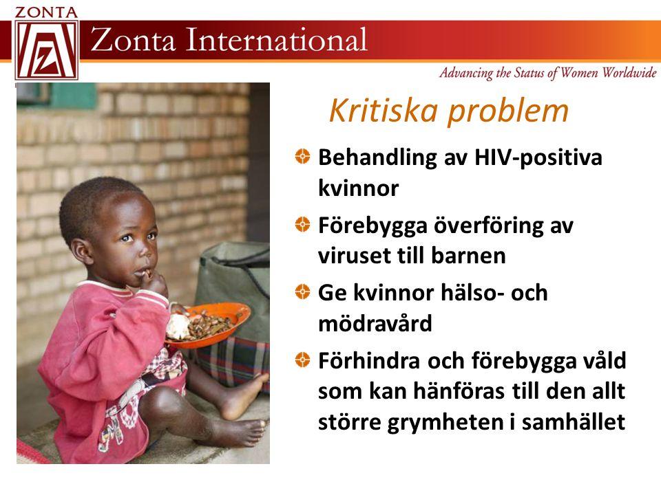 Kritiska problem Behandling av HIV-positiva kvinnor Förebygga överföring av viruset till barnen Ge kvinnor hälso- och mödravård Förhindra och förebygga våld som kan hänföras till den allt större grymheten i samhället