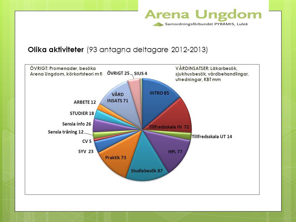 Olika aktiviteter (93 antagna deltagare 2012-2013) ÖVRIGT: Promenader, besöka Arena Ungdom, körkortsteori m fl VÅRDINSATSER: Läkarbesök, sjukhusbesök,