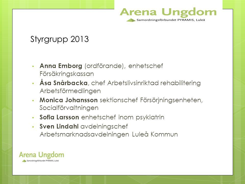 Styrgrupp 2013 • Anna Emborg (ordförande), enhetschef Försäkringskassan • Åsa Snårbacka, chef Arbetslivsinriktad rehabilitering Arbetsförmedlingen • M