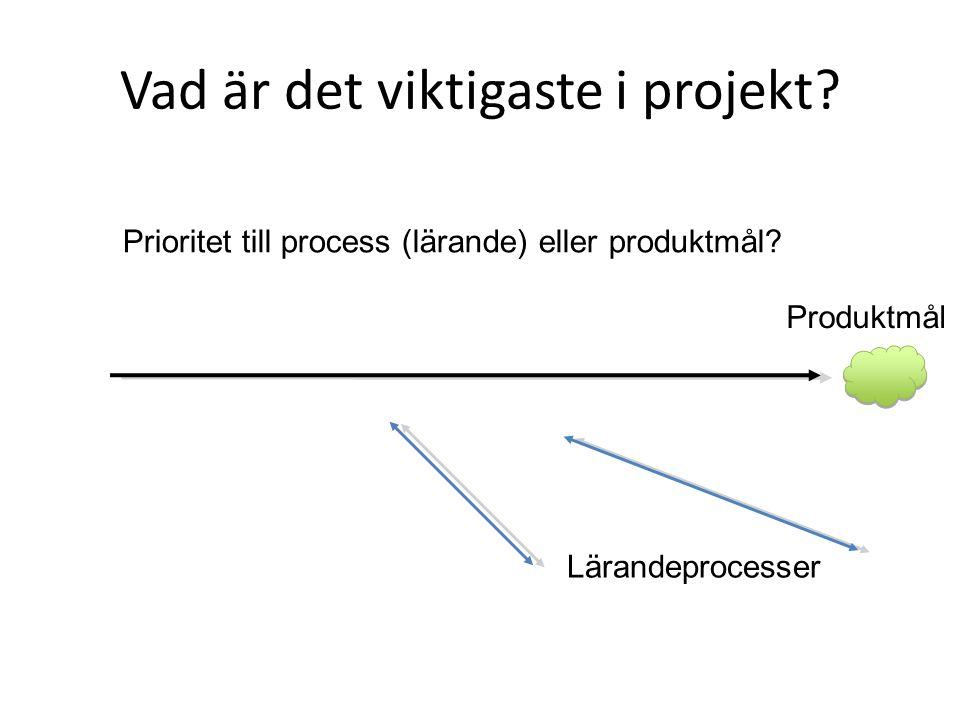 Vad är det viktigaste i projekt? Produktmål Lärandeprocesser Prioritet till process (lärande) eller produktmål?