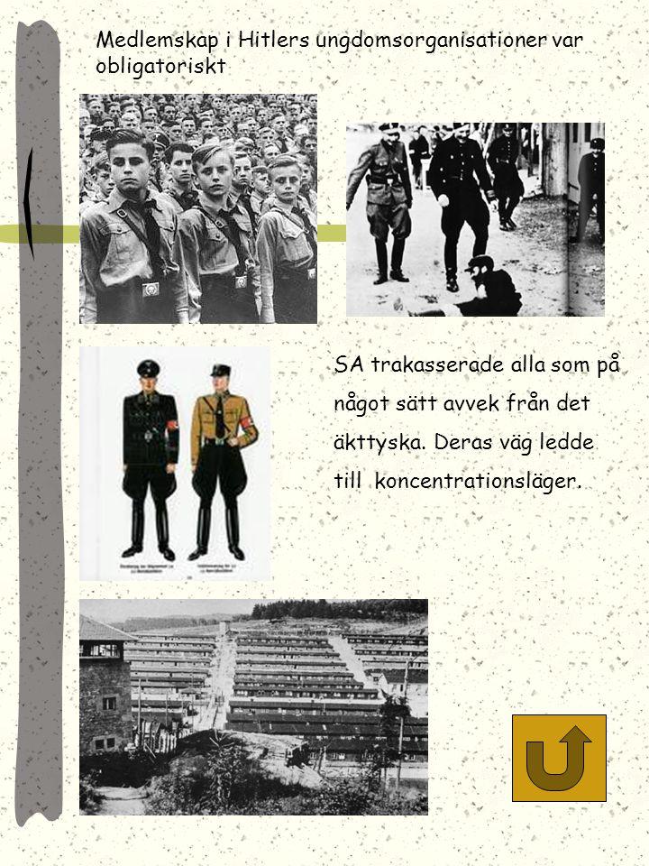 Hitler hyllas i riksdagen efter annekteringen av Österrike. Tyskarna tågar över gränsen