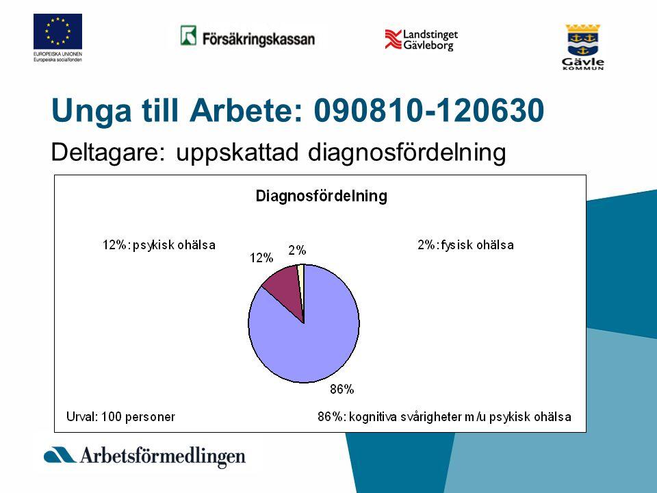 Unga till Arbete: 090810-120630 Deltagare: uppskattad diagnosfördelning