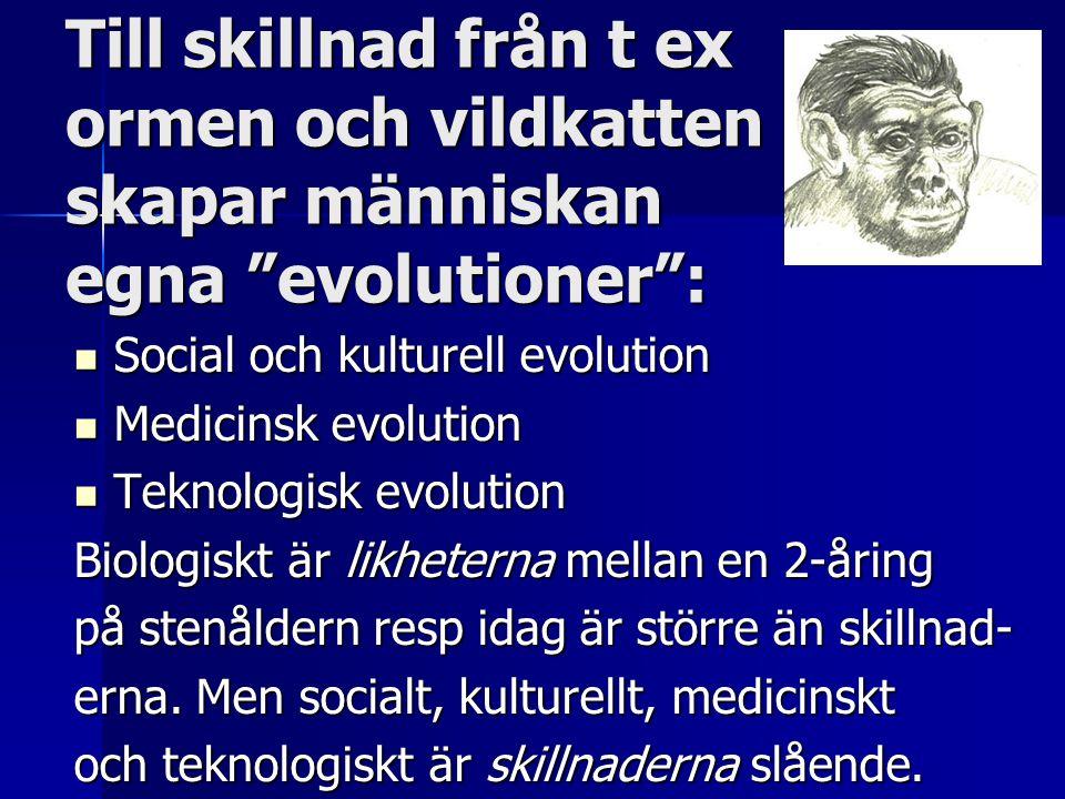 Till skillnad från t ex ormen och vildkatten skapar människan egna evolutioner :  Social och kulturell evolution  Medicinsk evolution  Teknologisk evolution Biologiskt är likheterna mellan en 2-åring på stenåldern resp idag är större än skillnad- erna.